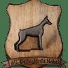 Allevamento Dobermann Della Ninfa Nobel a Tavullia, Pesaro-Urbino
